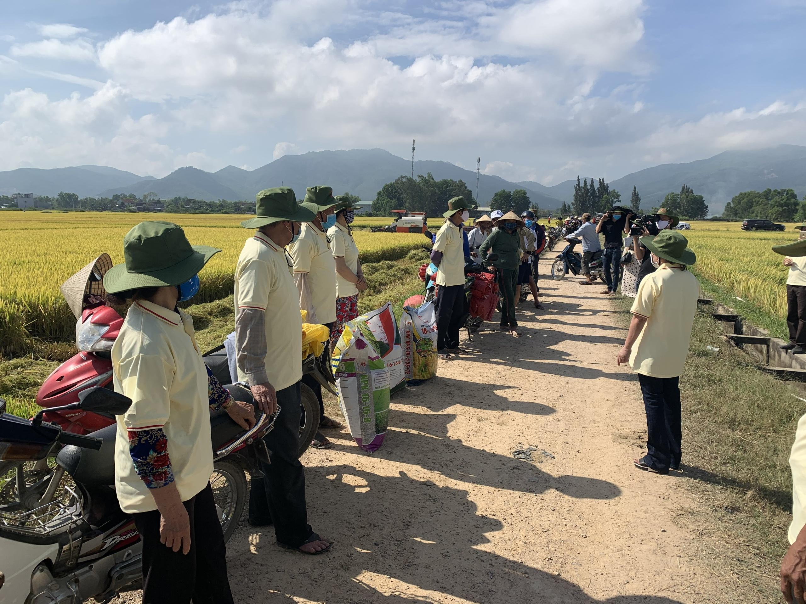 Sử dụng phân bón Nhật - Nam tại cánh đồng lớn